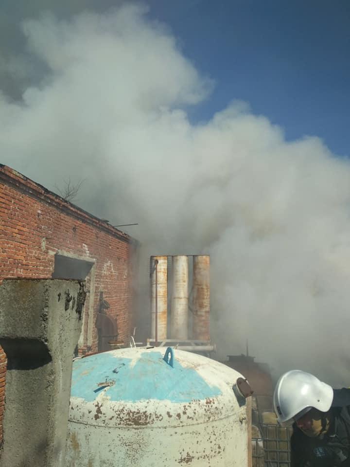 На Стрийщині 8 рятувальників гасили пожежу на відкритій території, фото-2